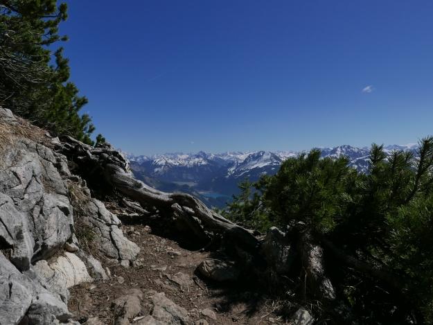 Alpen_Einstein_Tannheimer Tal